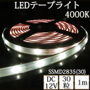 LEDテープライト シリコンチューブ TK-SSMD2835(30)-40K 温白色(4000K) 30粒/m 単色 IP67 1m DC12V 屋外使用可能 ジャック付外径5.5mm×内径2.1mm DIY ※点灯するには別途ACアダプターが必要です