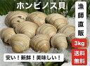 3kg【送料無料】漁師直送!だから新鮮!どこよりも安い!千葉県産 活ホンビノス貝 ふっくらと肉厚でおいしいダシがたっぷり!バーベキューに!酒蒸しに!