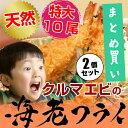 お得 な2パック セット ! 特大 車海老 エビフライ 冷凍 【クルマえびの えびふらい 10尾 ×