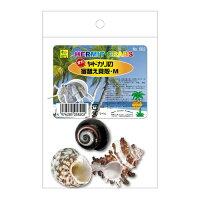 オカヤドカリの宿替貝殻 M 582 SANKO(三晃/サンコー)