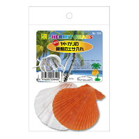 オカヤドカリの貝殻のエサ入れ 584 SANKO(三晃/サンコー)