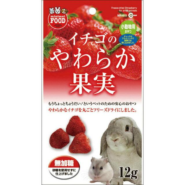 イチゴのやわらか果実 MR-615 MARUKAN(マルカン) - ウインドウを閉じる