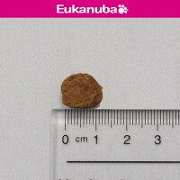 1歳~6歳用 ユーカヌバ 健康維持用(メンテナンス) 中型犬種 中粒 19kg Eukanuba(ユーカヌバ)