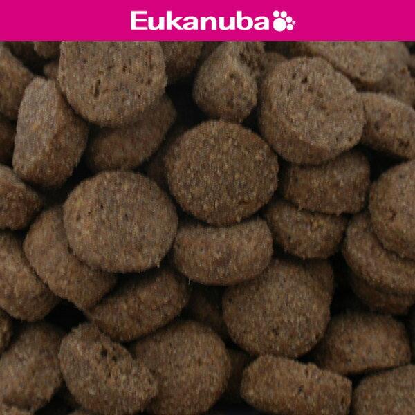 1歳~4歳用 ユーカヌバ 健康維持用(メンテナンス) 大型犬種 大粒 17.5kg Eukanuba(ユーカヌバ) - ウインドウを閉じる