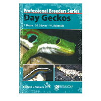Day Geckos・デイゲッコー ECOユニバース(エコユニバース)
