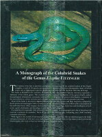 Monograph Of The Colubrid Snakes Of The Genus Elaphe Fitzinger・蛇に関する専攻論文 ECOユニバース(エコユニバース)