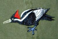 Ivory-Billed Woodpecker ハシジロキツツキ帽子 ECOユニバース(エコユニバース)