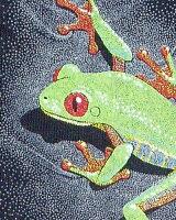 Red-Eyed Treefrog アカメアマガエル レディース キャミソール ECOユニバース(エコユニバース)