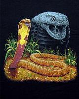 King Cobra キングコブラ Tシャツ ECOユニバース(エコユニバース)
