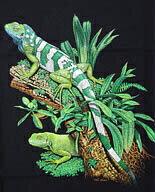 Fiji Iguana フィジーイグアナ Tシャツ ECOユニバース(エコユニバース)