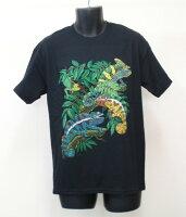 T37 Chameleons カメレオン Tシャツ ECOユニバース(エコユニバース)