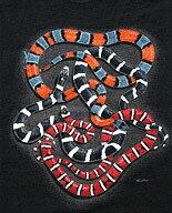 King Snakes キングスネーク Tシャツ ECOユニバース(エコユニバース)