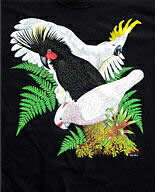 Cockatoos コッカトゥー(オウム) Tシャツ ECOユニバース(エコユニバース)