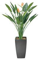 光触媒観葉植物 光の楽園 アートストレチア花付1.8 3A3202-850
