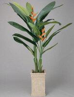 光触媒観葉植物 光の楽園 ヘリコニア2.0 3A3501-650