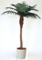 光触媒観葉植物 光の楽園 フェニックス1.8 3A3705-450