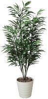 光触媒観葉植物 光の楽園 バンブーパーム1.8 3A3807-300