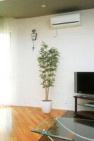 光触媒観葉植物 光の楽園 トネリコ1.7 3A4105-300