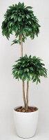 光触媒観葉植物 光の楽園 ベンジャミンダブル1.8 3A4202-330