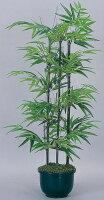 光触媒観葉植物 光の楽園 黒竹1.0(幹:天然黒竹) 3A4302-120