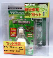 爬虫類セット ネオハロゲン&クリップスタンドテラ カミハタ(神畑)