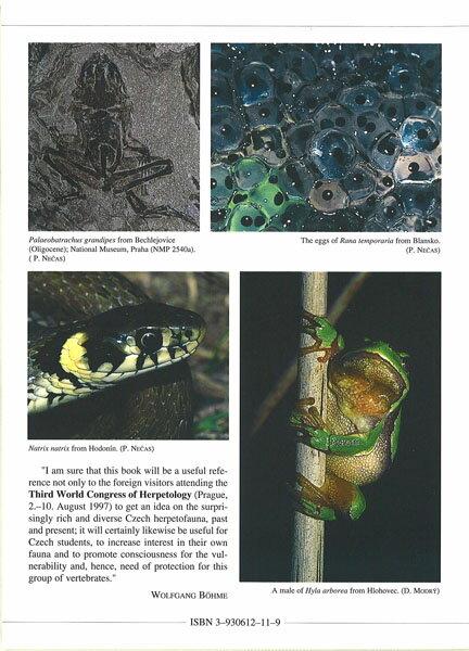 【送料激安】Czech Recent And Fossil Amphibians And Reptiles ・ チェコの両生類と爬虫類(ECOユニバース) - ウインドウを閉じる