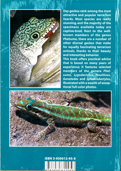 【送料激安】Day Geckos (Professional Breeders Series)・デイゲッコー(ECOユニバース) - ウインドウを閉じる