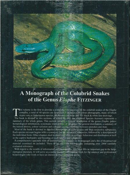 【送料激安】Monograph Of The Colubrid Snakes Of The Genus Elaphe Fitzinger・蛇に関する専攻論文(ECOユニバース) - ウインドウを閉じる