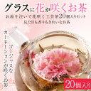 花茶 20個入り カーネーション花茶 花咲く工芸茶4種類 美容 花茶詰合せ 送料無料 特別価格 福袋