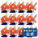 モンコレコイキング大漁セット(12個入り)【other_d】【180914dl】【takaratomy12】【endsale_18】