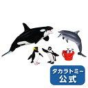 アニア AA-02 水族館の人気者ギフトセット