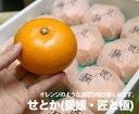 【2L〜3L】愛媛県産 せとか 匠と極【愛媛県 家庭用 みかん ミカン こたつ 蜜柑 柑橘 リッチ 贈り物 贈答 お祝い お返し ギフト】