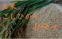 新米【28年産】玄米・こしひかり 10kg 送料無料