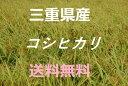 新米【29年産】 こしひかり 5kg 送料無料