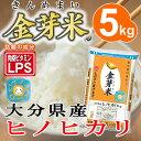 金芽米【無洗米】 大分県産ヒノヒカリ5kg【送料込】【丸の内タニタ食堂】【上質な甘みで人気の金芽米】