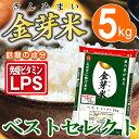 【29年産】金芽米 ベストセレクト5kg【送料込】※無洗米・...