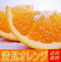 清見オレンジ 5kg【楽ギフ_のし】【送料無料】