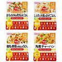 BIGグーグーキッチン12個セット(12ヶ月)【オンライン限定】