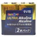 トイザらスオリジナル アルカリ乾電池 9V形