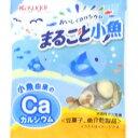 まるごと小魚 4連【お菓子】