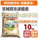 さよなら平成_売り尽くし!30年度[送料無料]宮城県登米産ひとめぼれ20kg (5kg×4) ポリ袋仕様[出荷当日精米]白米または無洗米要選択【あす楽対応_東北-関西】