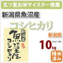 【新米】新潟県魚沼産「コシヒカリ こしひかり」10kg【28年産】【楽ギフ_のし】