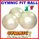 【あす楽◆今ならダブルアクションポンプをプレゼント】ギムニク・フィットボール65(パール) 直径65cm 適用身長160cm〜174cm(ギムニク バランスボー...