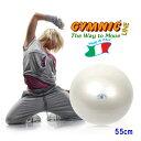 【あす楽◆ダブルアクションポンプをプレゼント】ギムニク フィットボール55(パール)直径55cm 適用身長145cm〜159cm(ギムニク バランスボール ギムニクボール)