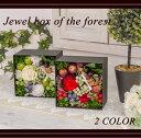 【母の日早割クーポン配布中&ポイント15倍】プリザーブドフラワー ボックスアレンジ 森の宝石箱 誕生日 インテリア お祝い 新築祝い