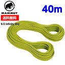 MAMMUT マムート 【40m】9.5 Infinity Dry 2010-02641 11136 pappel-limegreen ■クライミング ロープ 軽量 アウトドア
