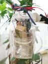 ロクシタン ギフト プレゼント ハンドクリーム ヴァーベナ グラス ガラス ドリームキャッチャー タイル コースター 数量限定全店で50個限り  コンビニ受取可 P2