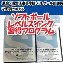 ソフトボール・レベルスイング習得プログラム〜打率を上げるコツ〜2枚組DVD