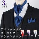 組み合わせは自由◆同カラーで揃えたアスコットタイ・ポケットチーフと選べるタイリング3点セット メンズ[紳士用/男性用/フォーマル/ビジネス/おしゃれ/パーティー...