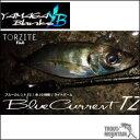 【送料無料】【ご予約】YAMAGA Blanks(ヤマガブランクス)BlueCurrent (ブルーカレント )/JH-Special 62/TZ NANO【スピニングモデル】